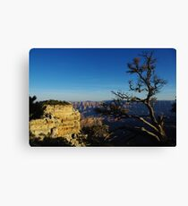 North Rim, Grand Canyon Canvas Print