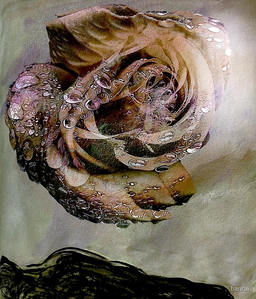 apparition.... eternal rose fantasy by banrai