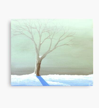 A Frosty Fog Canvas Print