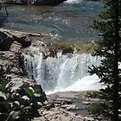 Elbow Falls by Coleen Gudbranson