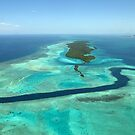 Adventures in Paradise  by Reef Ecoimages