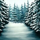 Snowy Path by Erin Scott