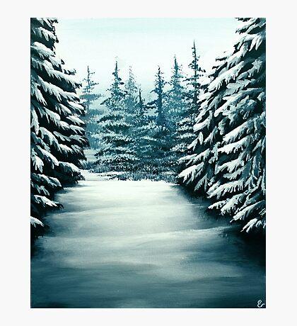 Snowy Path Photographic Print