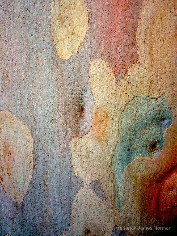 Bark Abstract # 7 by Frederick James Norman