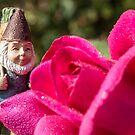 Rosie Gnome by DustysGnomes