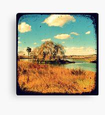 Dangars Lagoon Willow - Through The Viewfinder (TTV) Canvas Print