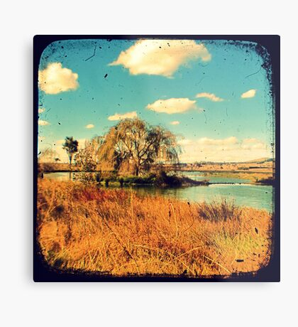 Dangars Lagoon Willow - Through The Viewfinder (TTV) Metal Print