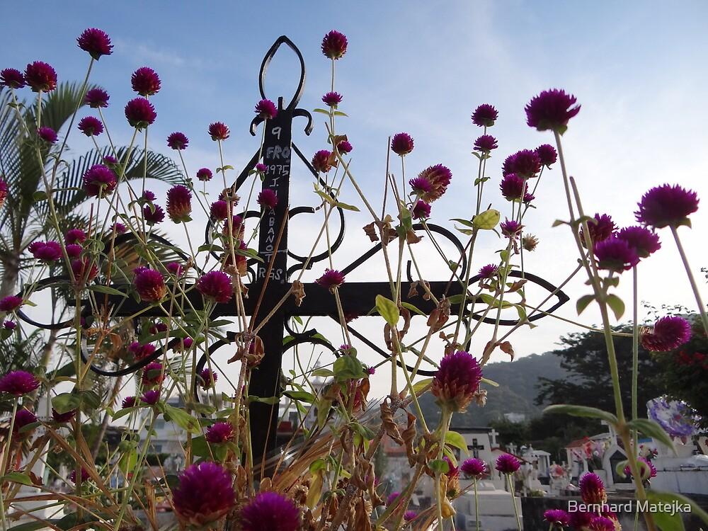 Living Flowers - Flores Vivas by Bernhard Matejka