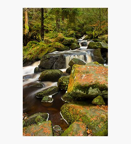Wyming Brook Photographic Print