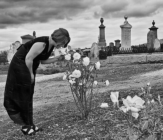Remember to smell the roses... by Maree Cardinale