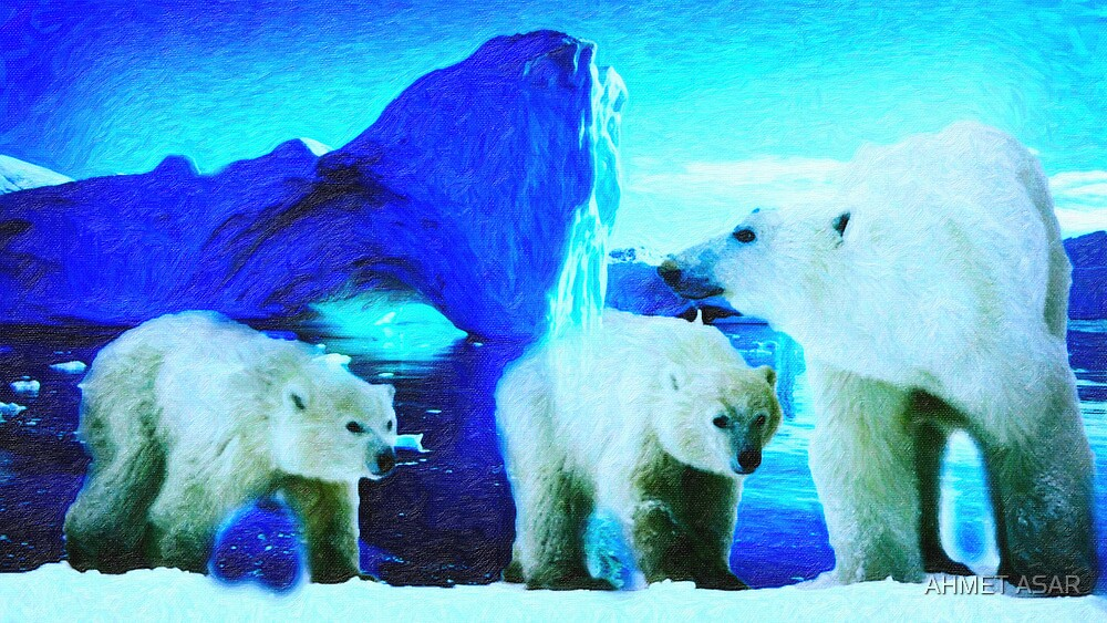polar bears 2 by MotionAge Media