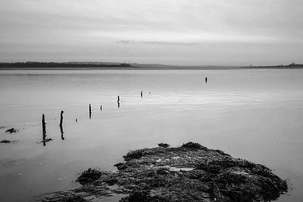 River Taw by John Burtoft