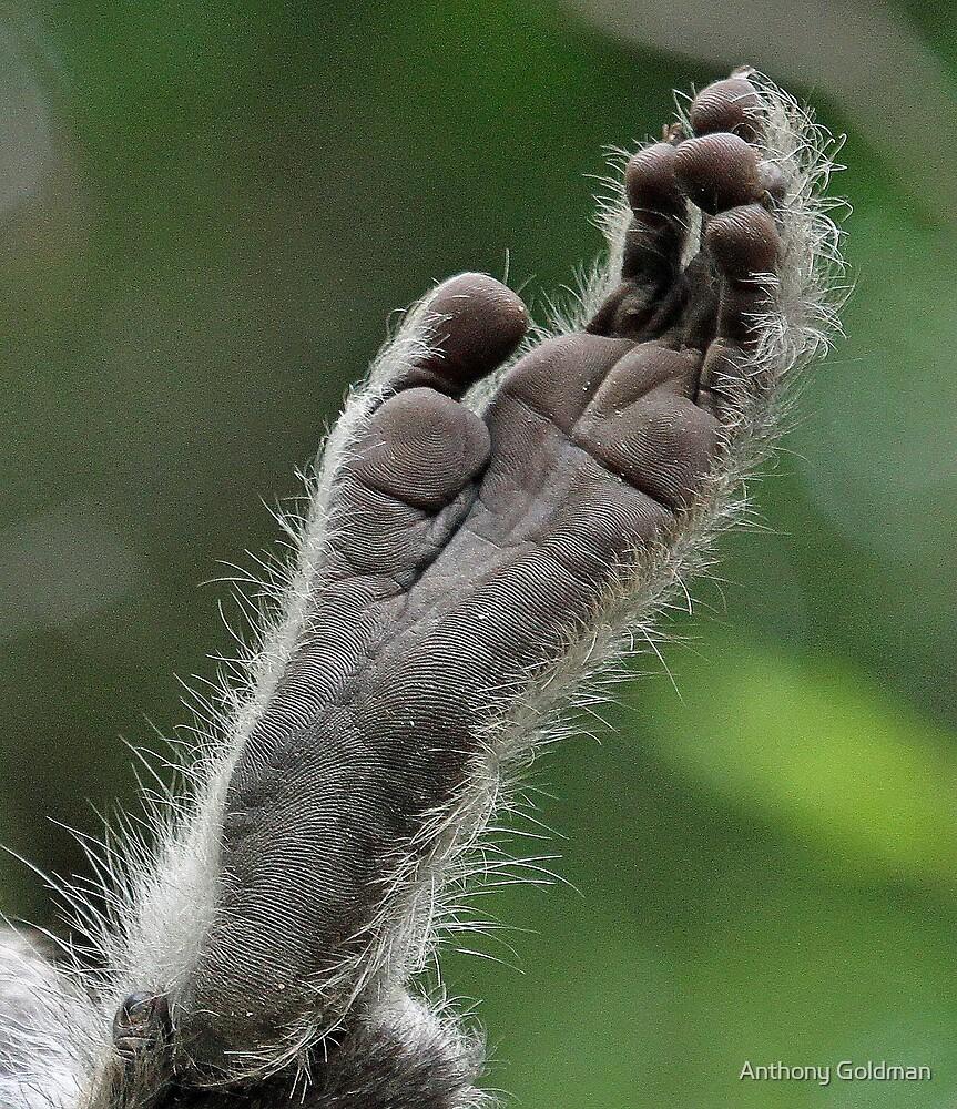 Foot art ! by Anthony Goldman