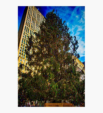 The New York Christmas Tree Photographic Print