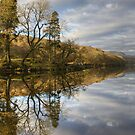 Tree Reflections-Coniston Water by Jamie  Green