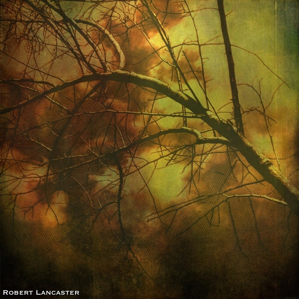 The Trees Are Alive, by Robert Lancaster by MobiTog