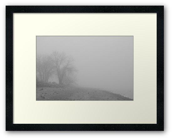 Foggy Lake Shoreline View BW by Bo Insogna