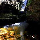 Luminous Light  by WobblyWombat