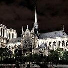 Notre Dame from the Seine by Colin White