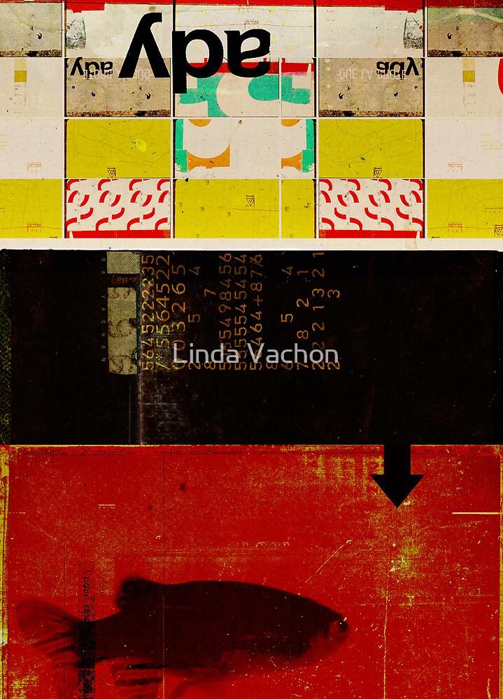 /05 by linda vachon