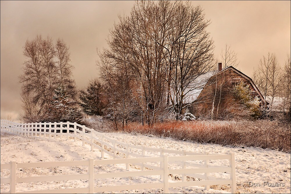 First Storm by Don  Powers