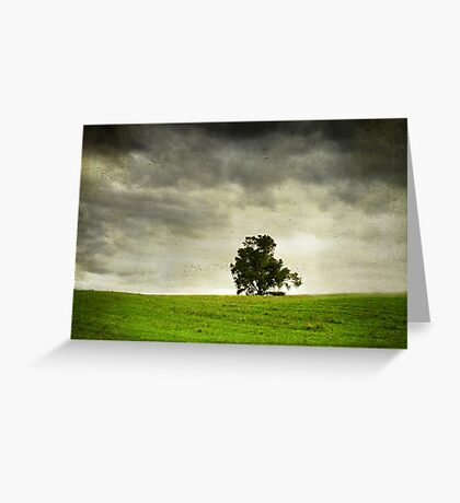The Lone Tree Greeting Card