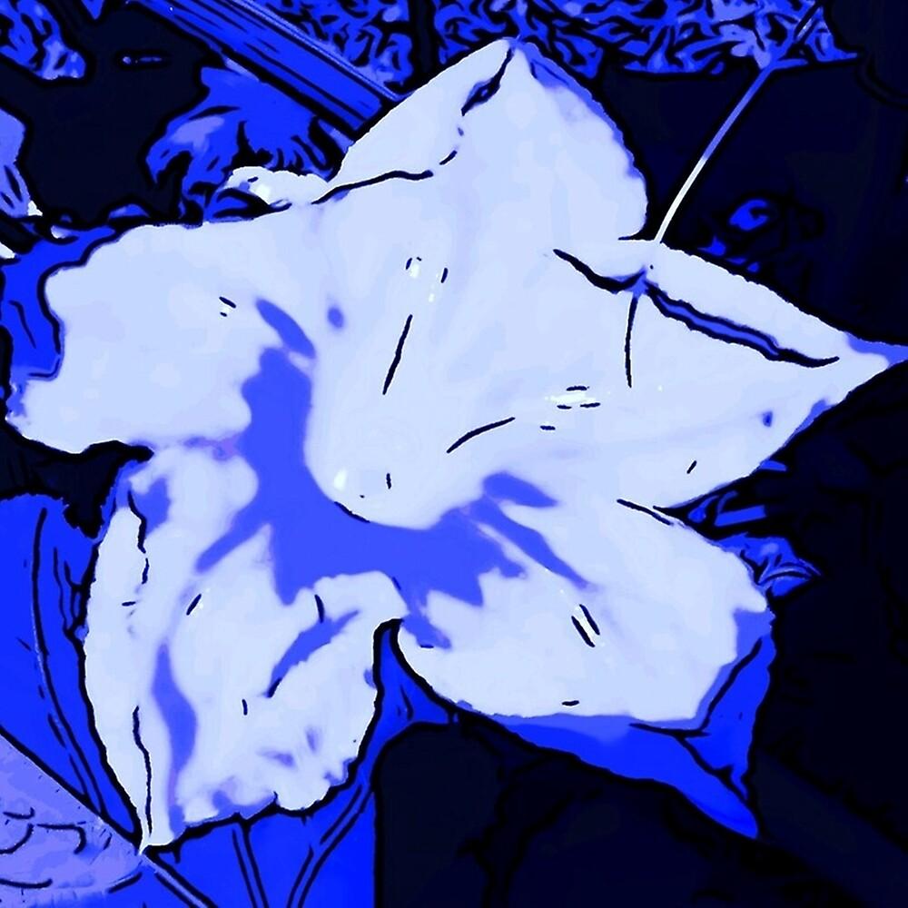 BLUE PUMPKIN FLOWER by paulvolker