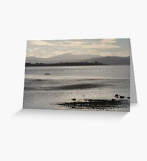 Bruny Island Greeting Card