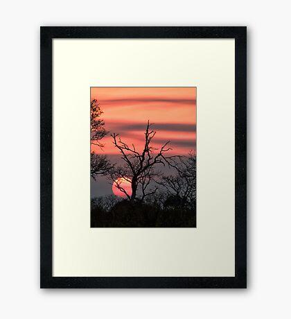 The Last Sun Framed Print