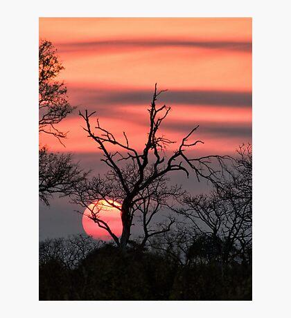 The Last Sun Photographic Print