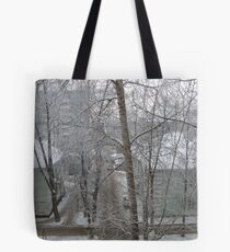 winter view-1 Tote Bag