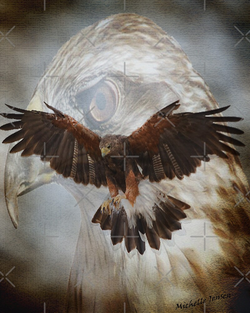 Hawk in Flight by WishesandWhims