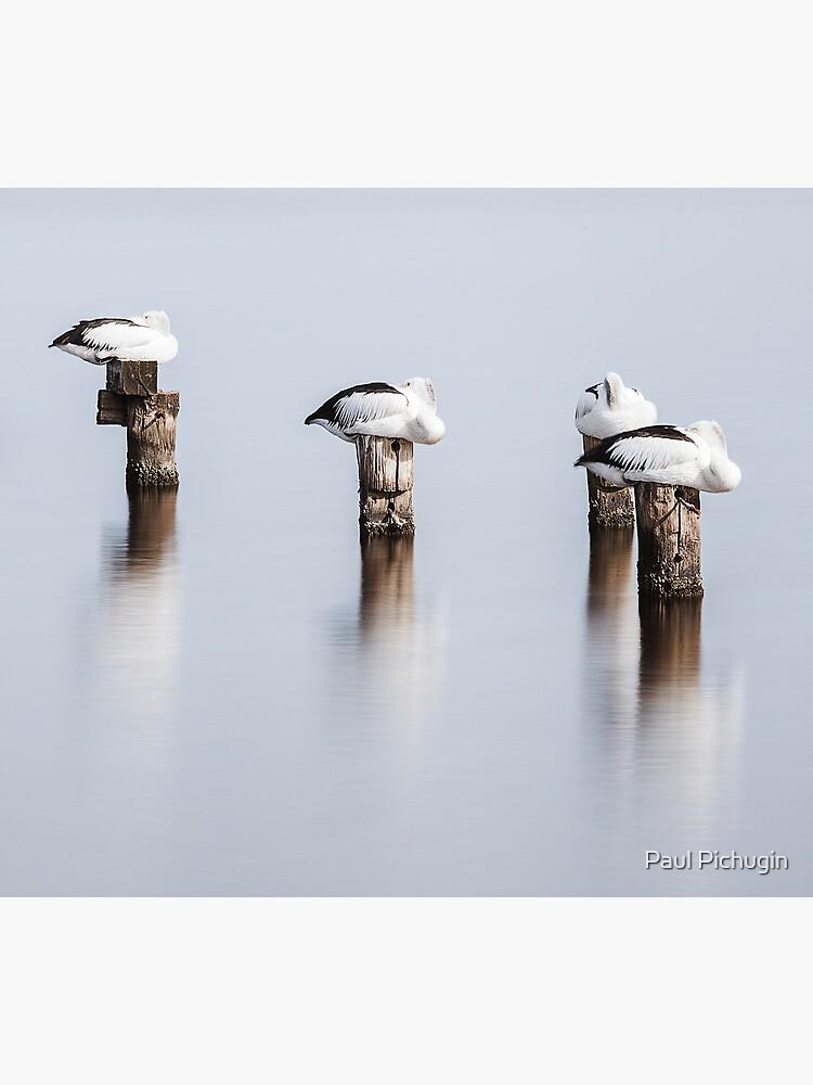 Stillness by paulmp