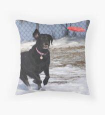 Ripley Throw Pillow