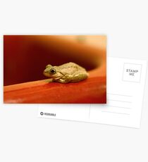 Frog on the Basin Postcards
