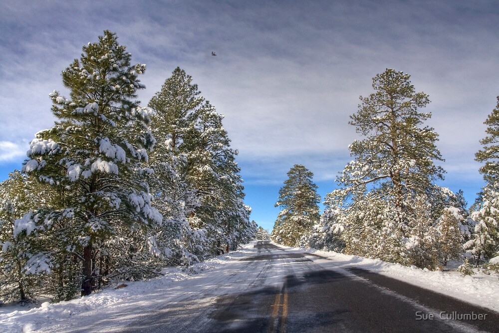 A Quiet Road in Winter by Sue  Cullumber
