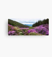 Vee Valley, County Tipperary, Wexford, Ireland Canvas Print