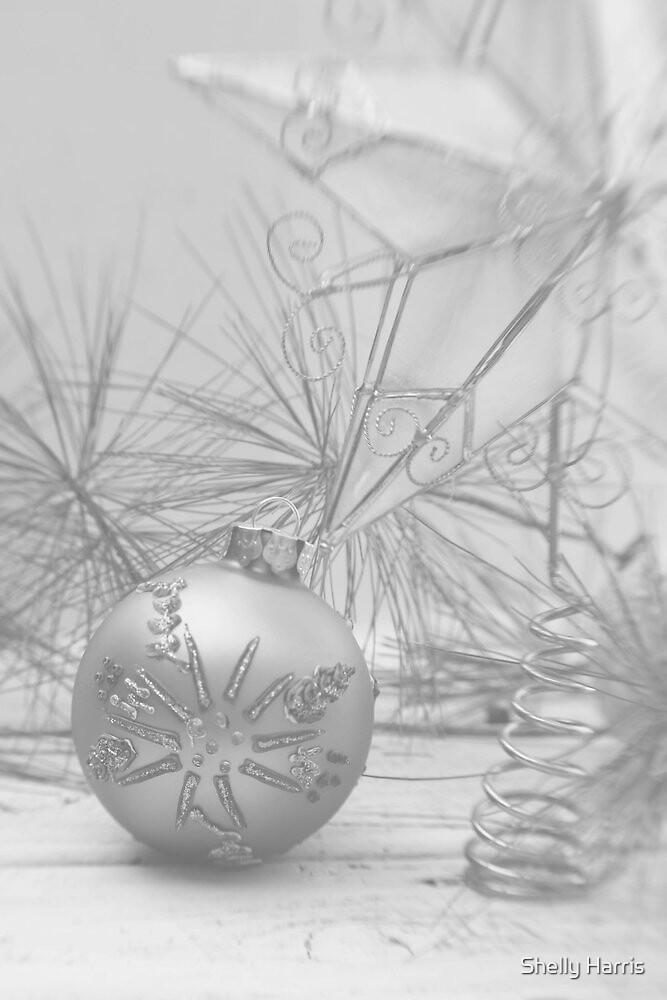 A Christmas Still Life by Shelly Harris