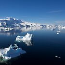 Reflecting on Antarctica 071 by Karl David Hill