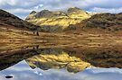 Langdale Reflections by Jamie  Green