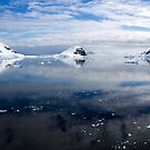 Reflecting on Antarctica 078 by Karl David Hill