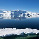 Reflecting on Antarctica 079 by Karl David Hill