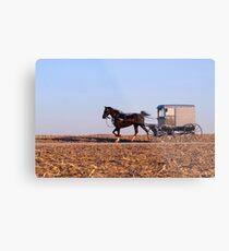 Amish Commute Metal Print
