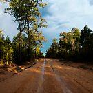 Wet Roads by David Haworth