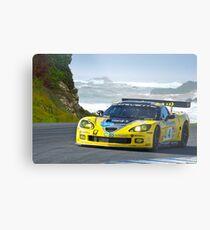 2007 Corvette Racing Metal Print