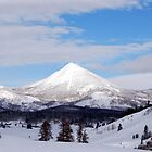 Rocky Mountains USA by barnsis