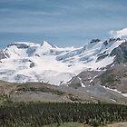 Sunwapta ice field 19610623 0808 by Fred Mitchell