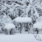 Tea Time In The Snow by Linda Miller Gesualdo