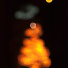 Christmas Tree by Richard G Witham