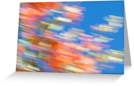 Desert Flower Impressionist No 3 by ckphoto